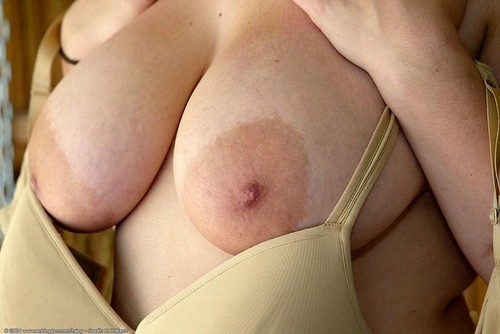 photo cougar pour s exciter 135